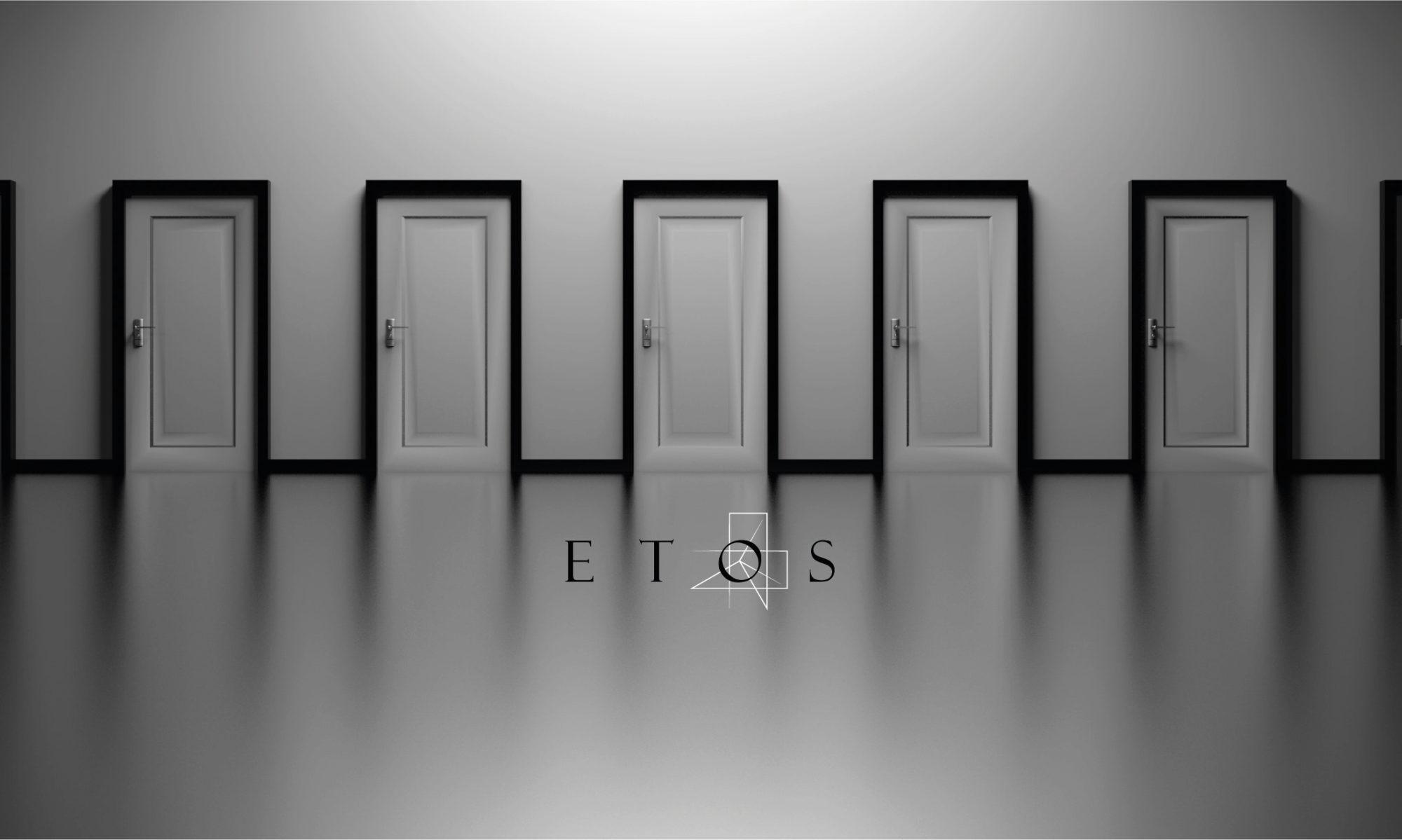 Drzwi drewniane wewnętrzne, zewnętrzne (wejściowe) ETOS